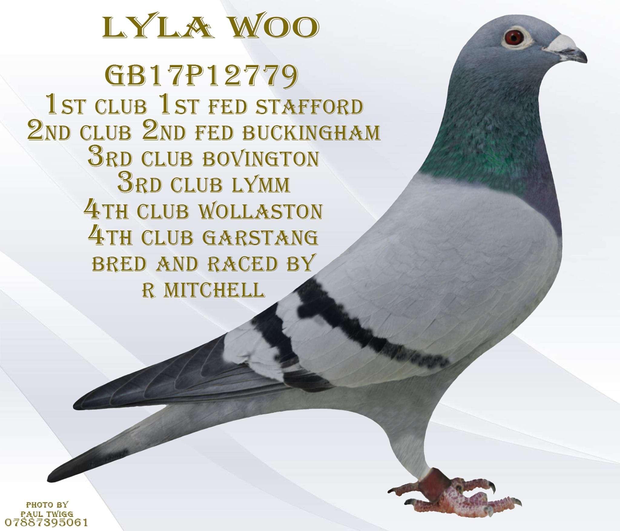 Lyla Woo